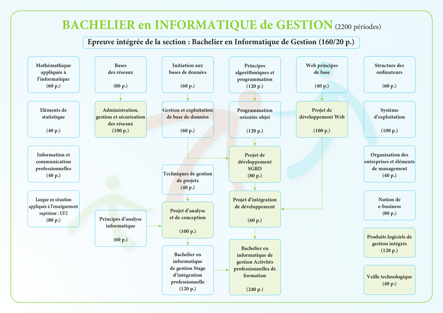 Bachelier en informatique de gestion, organisation de la section
